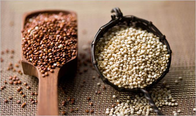 quinoa_topic600